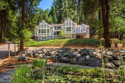 Nevada City CA Single Family Home For Sale: $749,999