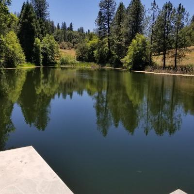 Nevada County, Placer County Single Family Home For Sale: 10653 Douglas Lane