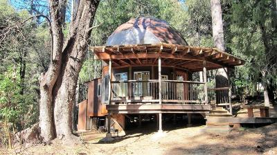 Nevada City Single Family Home For Sale: 20434 Grizzly Creek Road