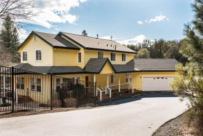 Grass Valley Single Family Home For Sale: 20855 Inspiration Lane