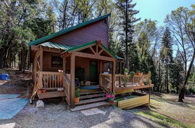 Nevada City Single Family Home For Sale: 11879 Casci Road