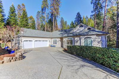 Grass Valley Single Family Home For Sale: 919 Freeman Lane