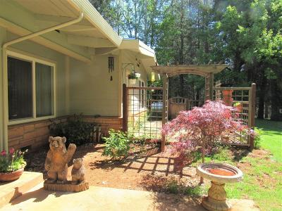 Grass Valley Single Family Home For Sale: 13984 Dalmatian Drive