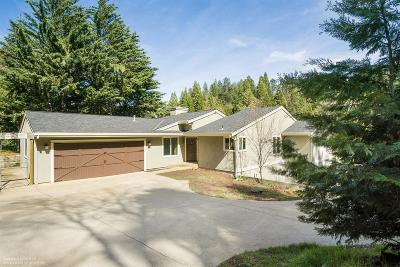 Grass Valley Single Family Home For Sale: 13975 Agony Hill Road