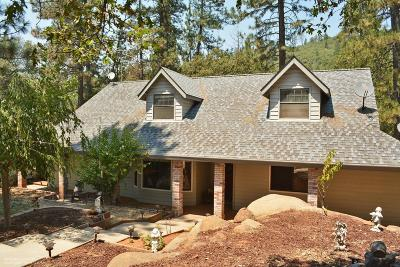 Grass Valley Single Family Home For Sale: 10586 Salcido Lane