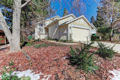 Grass Valley Single Family Home For Sale: 291 Horizon Circle