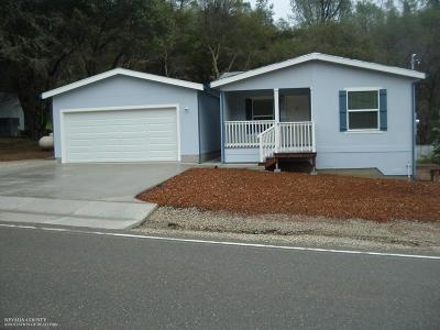 Nevada County Single Family Home For Sale: 15803 Brewer Road