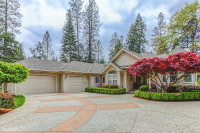 Nevada City Single Family Home For Sale: 10792 Willow Valley Road