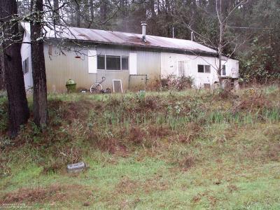Grass Valley Single Family Home For Sale: 20340 Gunstock Road