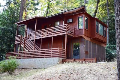 Nevada City Single Family Home For Sale: 18411 Sages Road Road