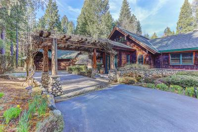 Nevada City Single Family Home For Sale: 10499 Jasper Agate Court