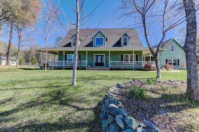 Single Family Home For Sale: 17039 Indian Springs Ranch Road