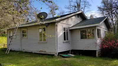 Auburn Single Family Home For Sale: 9920 Joeger Road