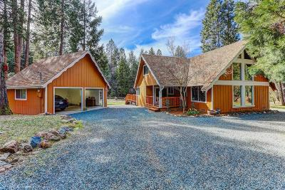Grass Valley Single Family Home For Sale: 12652 Rattlesnake Road