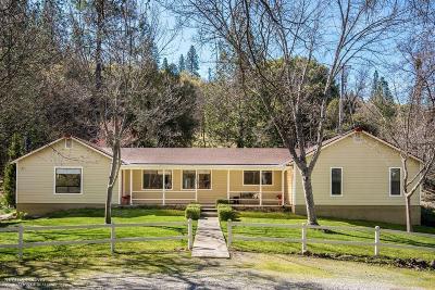 Nevada City Single Family Home For Sale: 12653 Stockdale Road