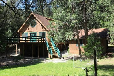 Nevada City Single Family Home For Sale: 13874 Gas Canyon Rd. Road