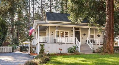 Nevada City Single Family Home For Sale: 427 S Pine Street