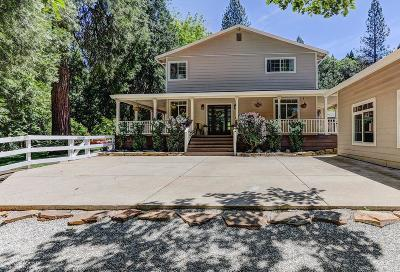 Nevada City Single Family Home For Sale: 12282 Red Dog Road