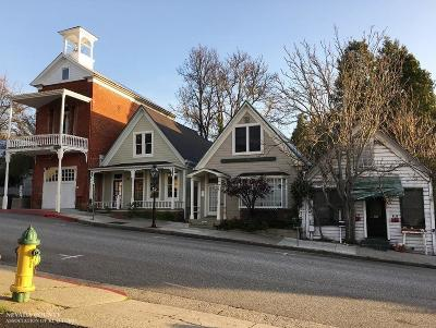 Nevada City Single Family Home For Sale: 414 Broad Street