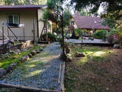 Nevada City Single Family Home For Sale: 15656 Mountain View Drive