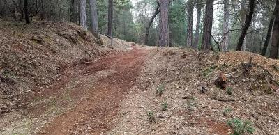 Grass Valley CA Residential Lots & Land For Sale: $49,000