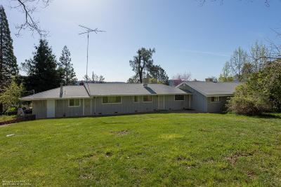 Grass Valley Single Family Home For Sale: 19418 Mountain Lion Road