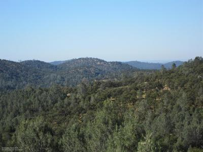 Nevada County Residential Lots & Land For Sale: 20942 Dalzell Road