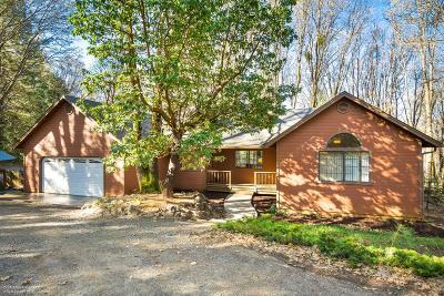 Nevada City Single Family Home For Sale: 14142 Lightning Tree Road