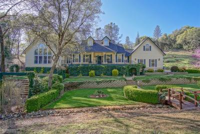 Nevada County Single Family Home For Sale: 19368 Tiger Tail Road