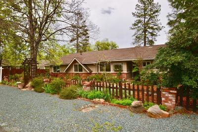 Grass Valley Single Family Home For Sale: 10643 Bragg Avenue