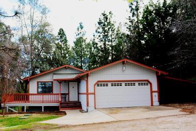 Smartsville CA Single Family Home For Sale: $359,000