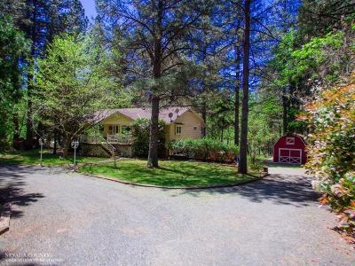 Grass Valley Single Family Home For Sale: 15756 Rattlesnake Road