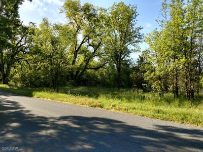 Nevada County Residential Lots & Land For Sale: 18065 Lasso Loop