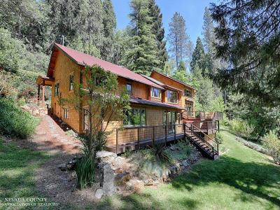 Nevada City Single Family Home For Sale: 353 Old Downieville Highway