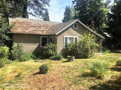 Grass Valley Single Family Home For Sale: 220 Race Street