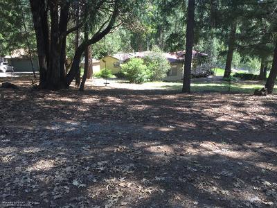 Nevada City Single Family Home For Sale: 17830 Green Ravine Road