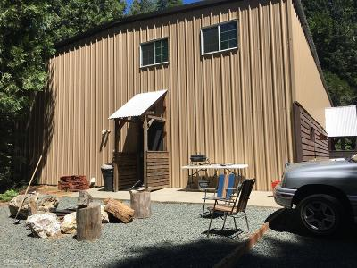 Nevada City Single Family Home For Sale: 10945 Washington Road