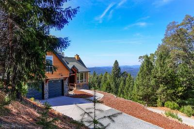 Nevada City Single Family Home For Sale: 11401 Winter Moon Way