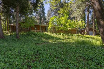 Nevada City Single Family Home For Sale: 14601 Echo Ridge Drive