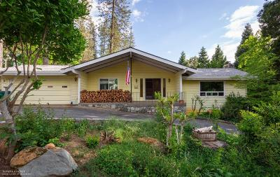 Grass Valley Single Family Home For Sale: 123 Berryman Street