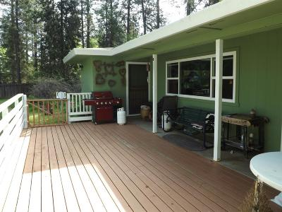 Nevada County Single Family Home For Sale: 10610 Sky Circle