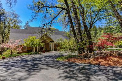 Grass Valley Single Family Home For Sale: 13685 Khalid Court