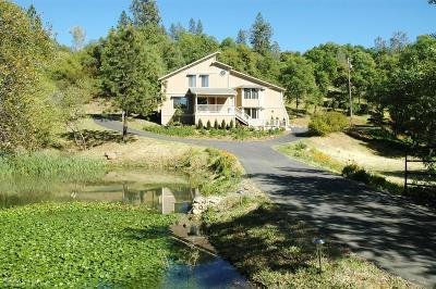 Grass Valley Single Family Home For Sale: 10593 Oak Drive