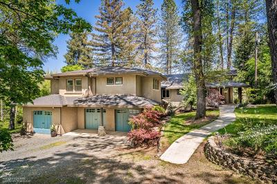 Nevada County, Placer County Single Family Home For Sale: 13401 Oakbend Avenue