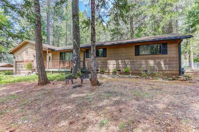 Nevada City Single Family Home For Sale: 12922 Red Dog Road