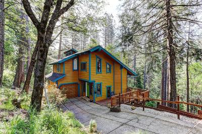 Grass Valley Single Family Home For Sale: 10435 Crestview Drive