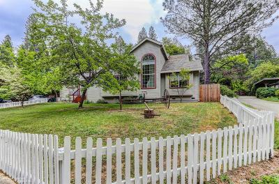 Nevada City Single Family Home For Sale: 975 Gold Flat Road