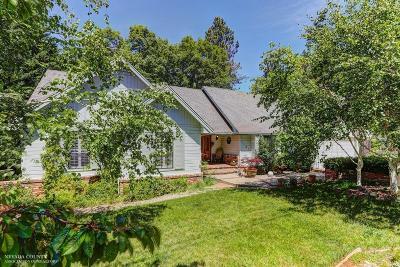 Nevada City Single Family Home For Sale: 11512 Via Vista Drive