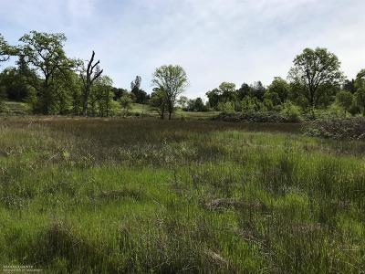 Auburn Residential Lots & Land For Sale: 21861 Golden Pines Court