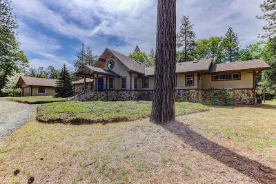 Nevada City Single Family Home For Sale: 14580 Harmony Estates Road